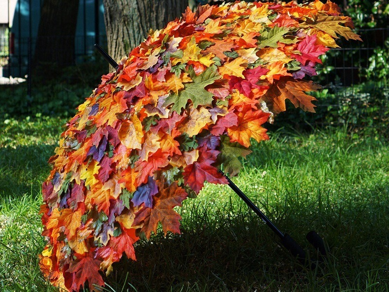 Autumn-Umbrella